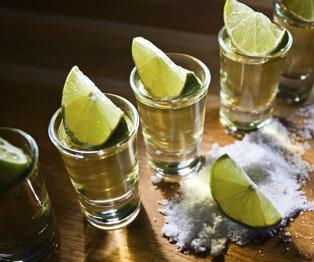 Clases de tequila en Nuevo Vallarta