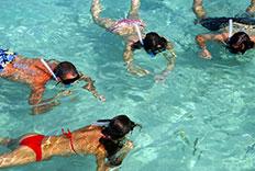 Paquete de Snorkeling en nuestro hotel de Quintana Roo