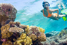 Paquete de buceo en nuestro hotel de Quintana Roo